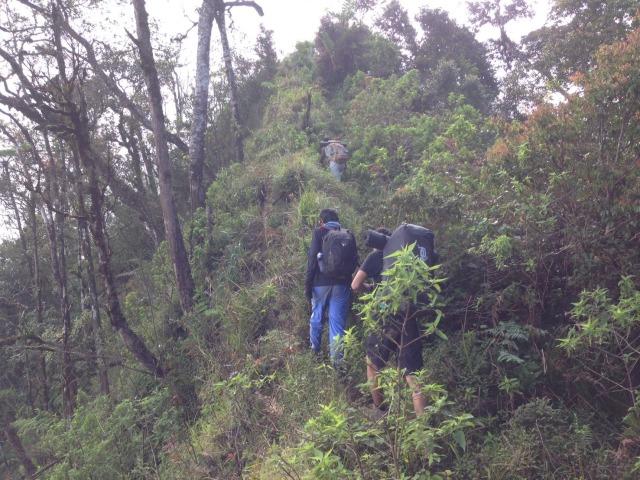 Info Pendakian Gunung Burangrang